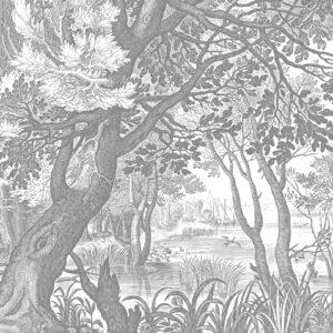 Engraved Landscapes